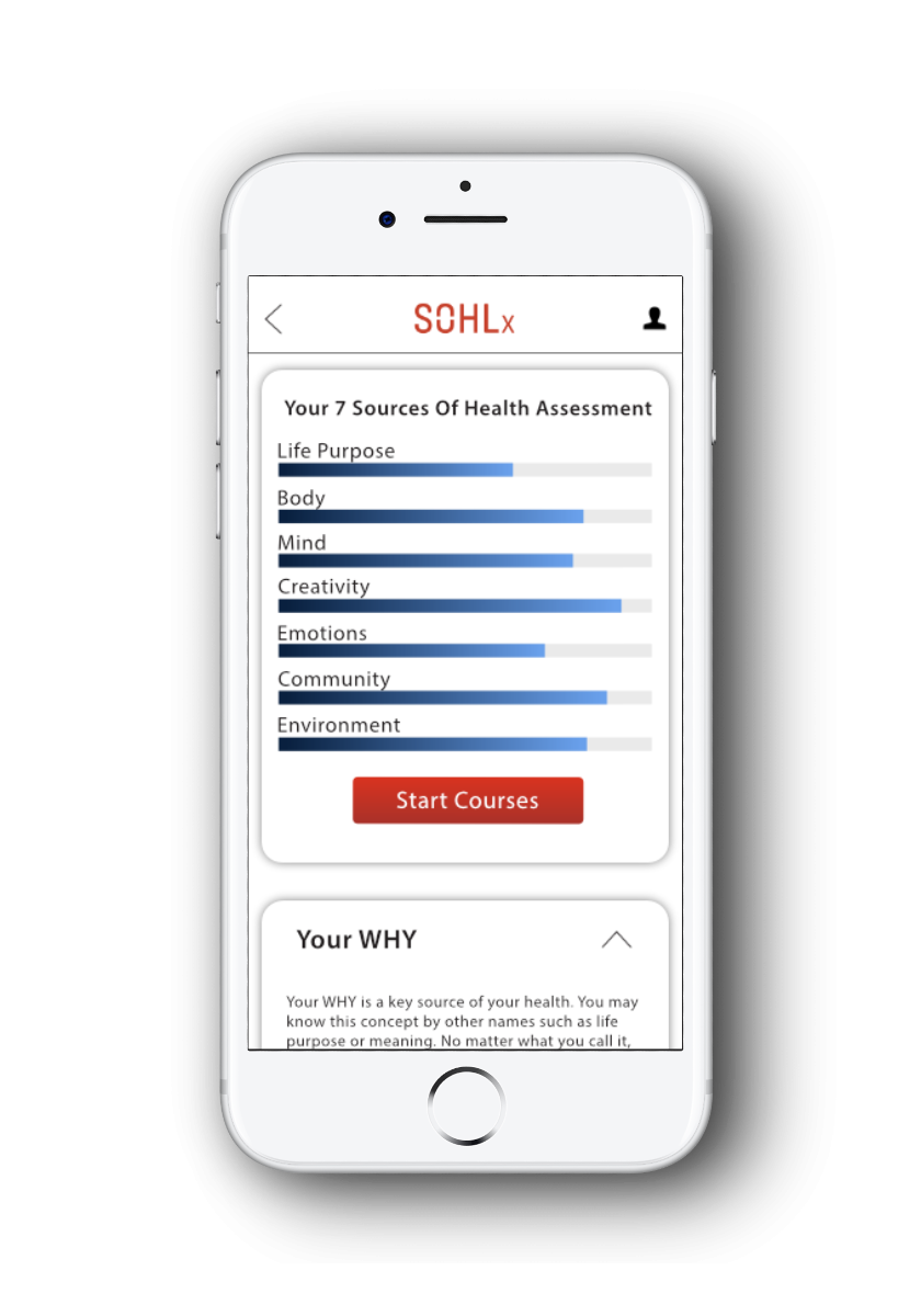sohlx-app-dash-mobile-phone